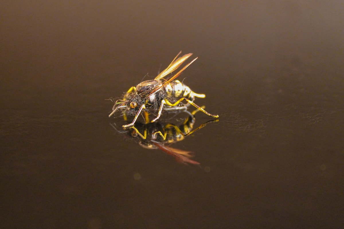 Wasp fly lures