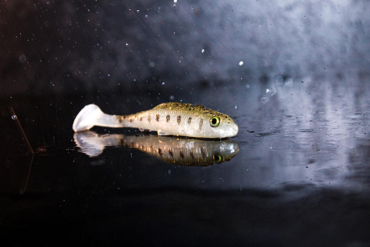 bait fish soft lure ultra realtistic rainy day